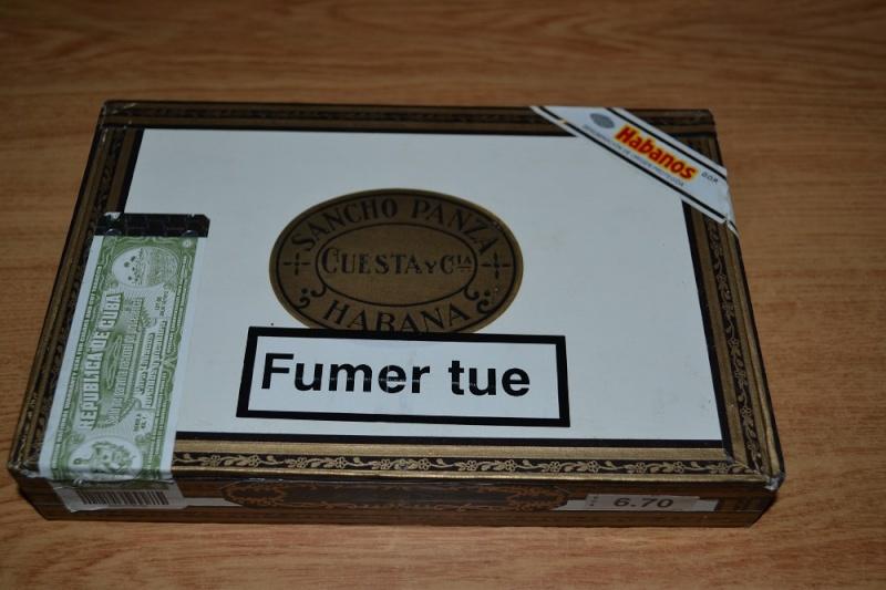 Lap Steel Cigar Box Guitar  Dsc_0110