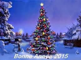 Bonne année 2015 Images10