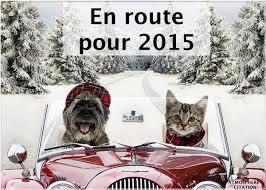 Bonne année 2015 Images11