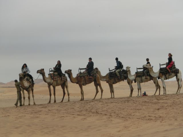 Urlaub in Namibia 0210