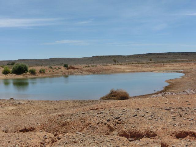 Urlaub in Namibia - Seite 2 1110