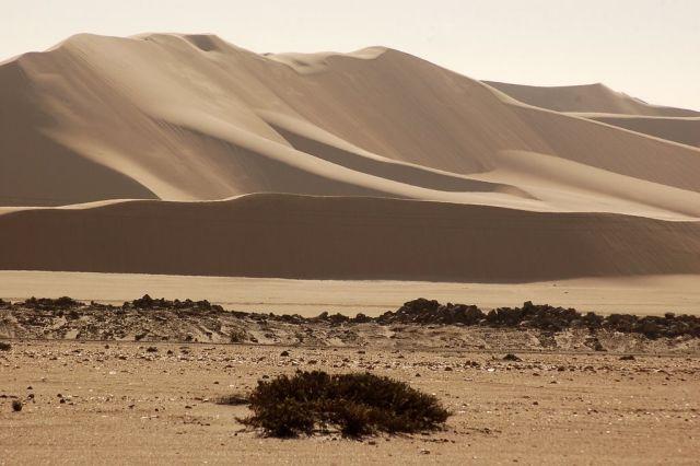 Urlaub in Namibia - Seite 3 4110