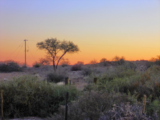 Urlaub in Namibia - Seite 3 Abends10
