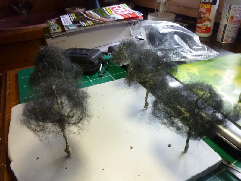 la suite des arbres P1080645