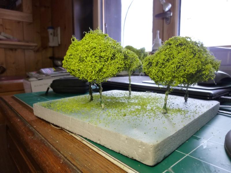 la suite des arbres P1080646