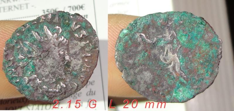 Tetricus I Dsc00512