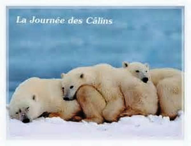 Hug day, journée des calins (21 janvier) Calins10