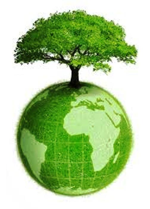 Tou Bichvat (Nouvel an des arbres) Tou_bi10