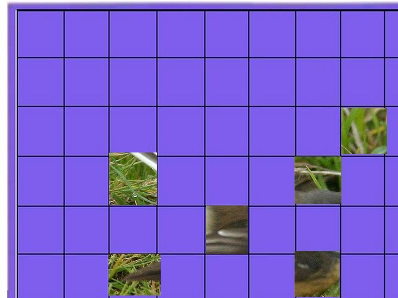 un petit oiseau - ajonc- 7 mars trouvé par Martine Oiseau15