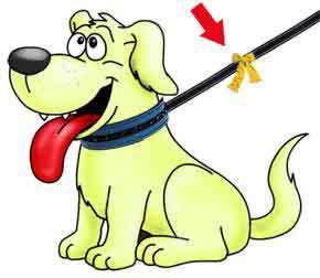 Le ruban jaune pour les chiens qui ont besoin d'espace Ruban-11