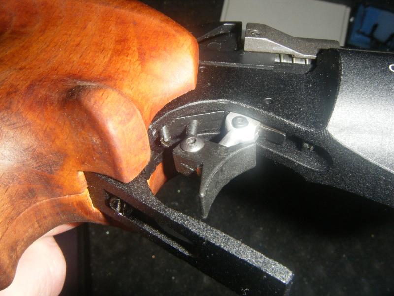 Pistolet CHIAPPA 6004 FAS - Page 2 Dscf3026
