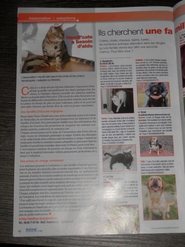 """Parution dans le magazine """"Animal santé & Bien être"""" P9214910"""