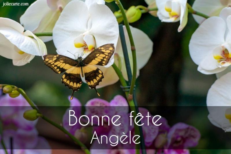 fête  à  souhaiter   - Page 2 Angele10