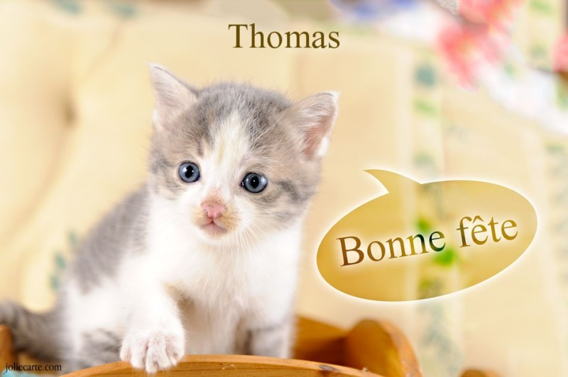 fête  à  souhaiter   - Page 2 Thomas10