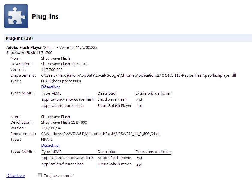 Crashs de Shockwave Flash avec Google Chrome 2013-057