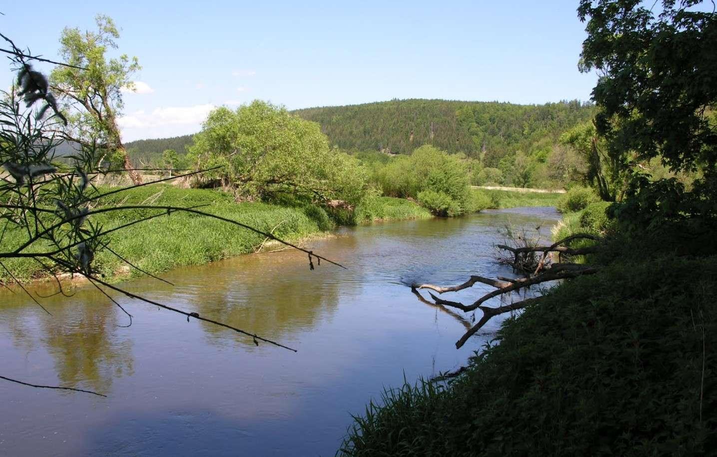 """La disparition du Danube (Donauversickerung), Immendingen, Allemagne, 47°55'46.28""""N 8°45'20.68""""E 2015-147"""