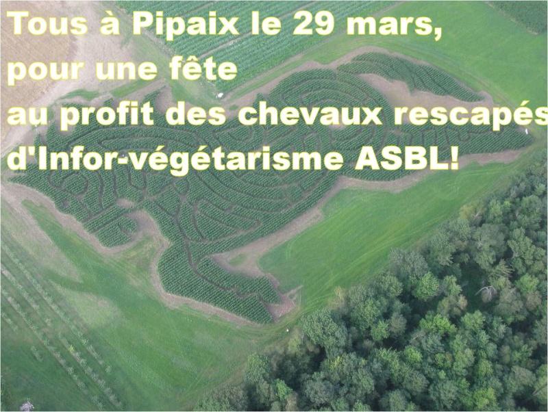 Fête équestre à Pipaix (Leuze-en-Hainaut) le 29 mars 2015 57692510