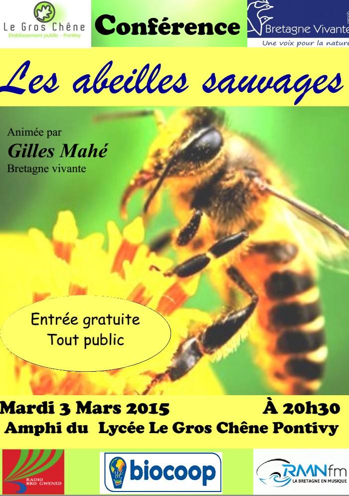 """Conférence """"les Abeilles sauvages"""" Pontivy Sans_t37"""