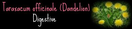 .Healers Guide. Dandel10