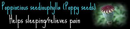 .Healers Guide. Poppy_10