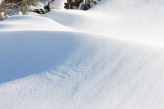 Dunes hivernales 063dun12