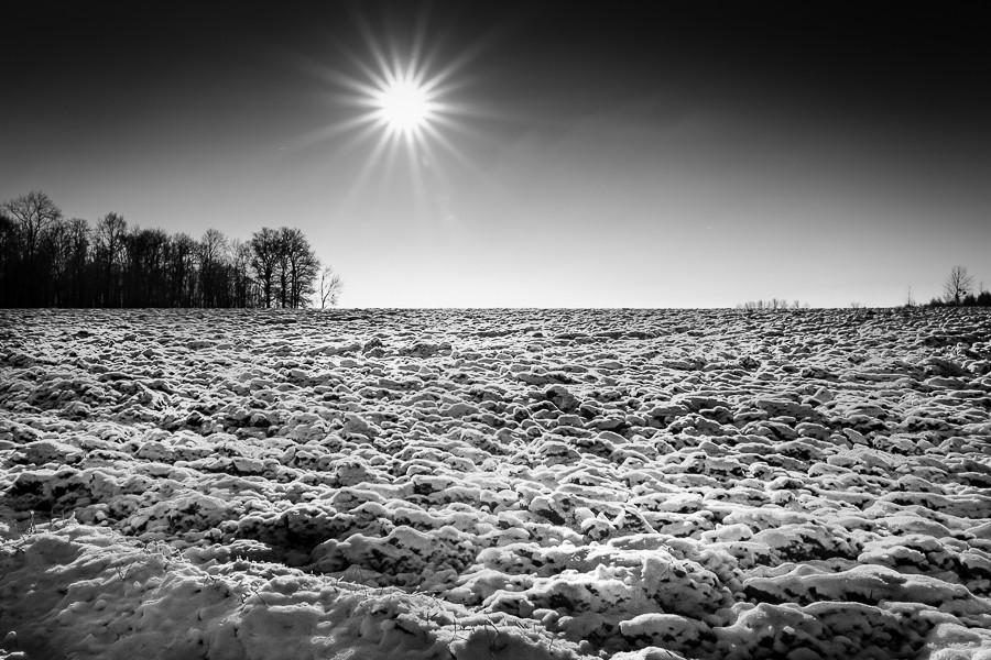 Soleil hivernal 114sol11