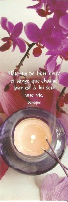 Proverbes - citations -  jolies phrases - pensées 006_1411