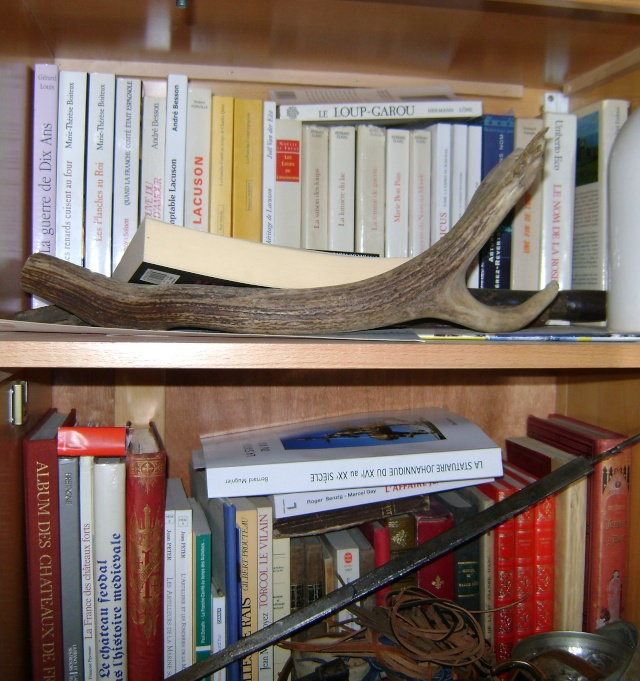 Vos collections... de livres Dsc04441