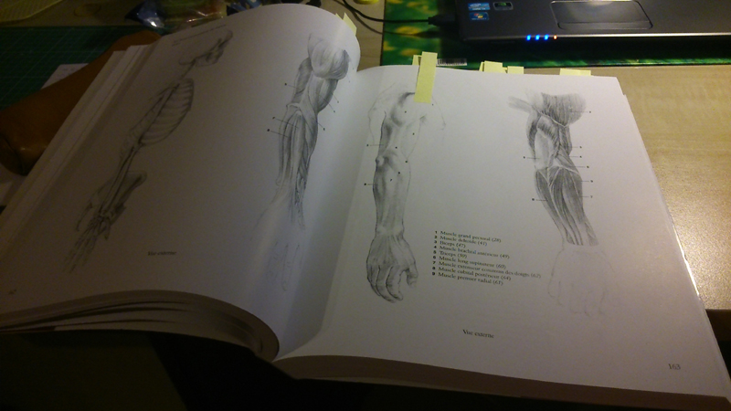 s'entraîner de façon simple pour apprendre à dessiner le corps. 0110