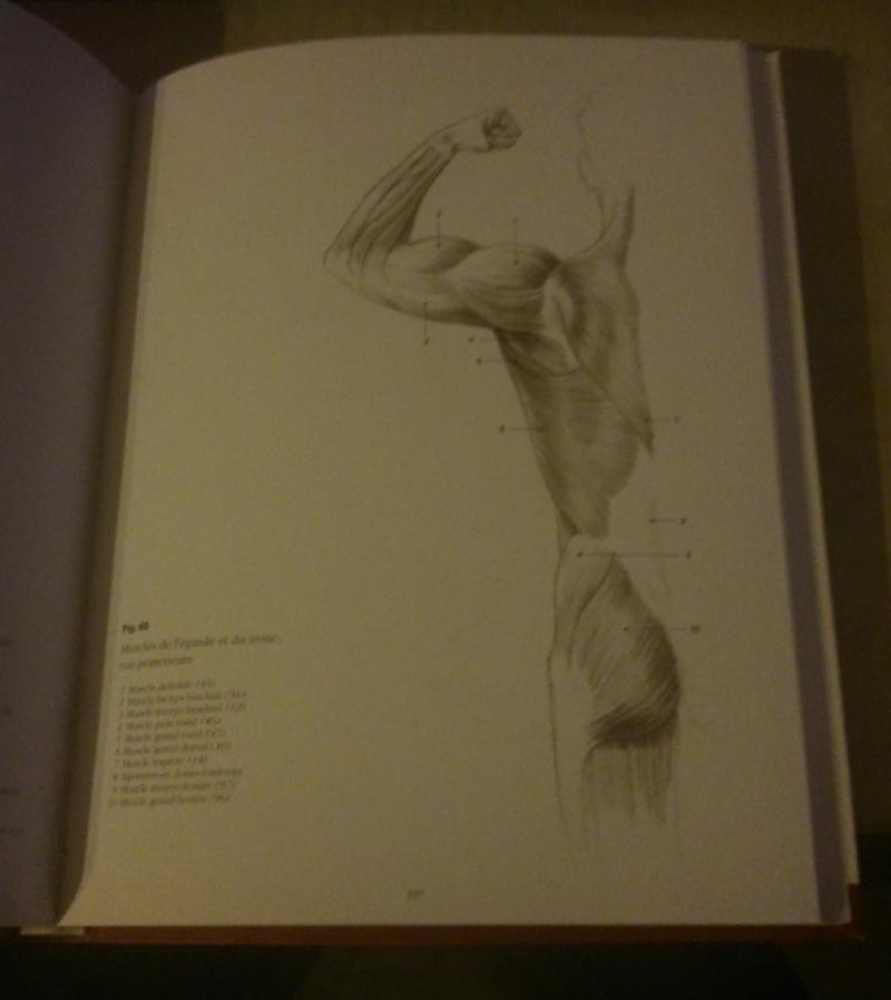 s'entraîner de façon simple pour apprendre à dessiner le corps. 0610