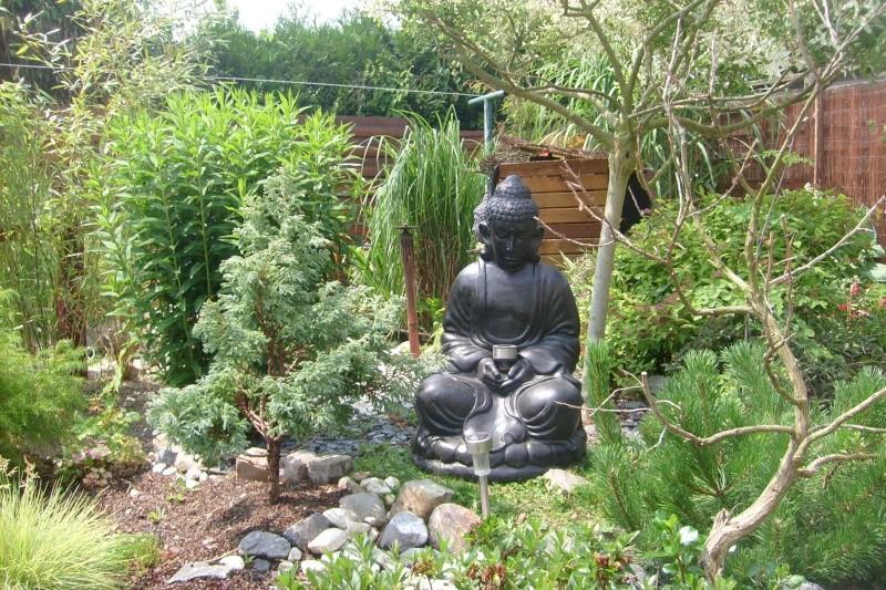 contruire un bassin  jardin S7302120