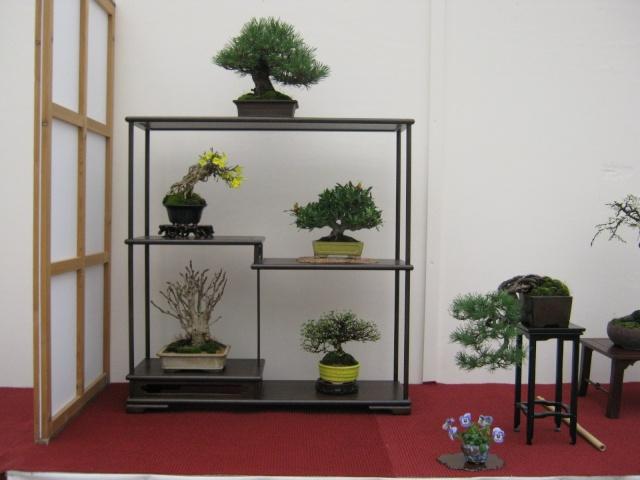 Shohin Display Show_f10