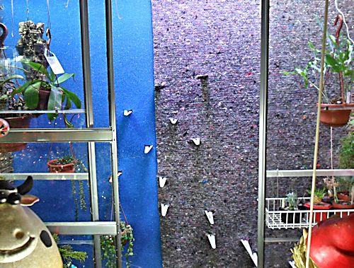 Un mur végétal dans ma serre salon Feutre10