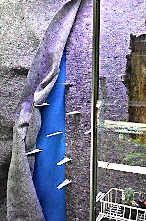 Un mur végétal dans ma serre salon Feutre11