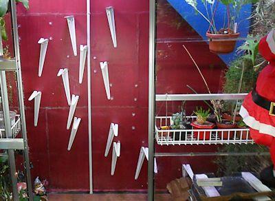 Un mur végétal dans ma serre salon - Page 2 Instal13