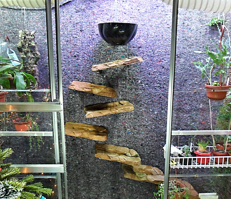 Un mur végétal dans ma serre salon Instal14