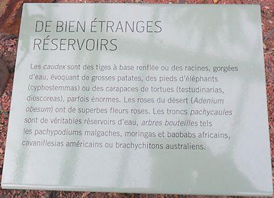 Jardin des plantes à Paris (5e) en décembre 2014  Les_gr18