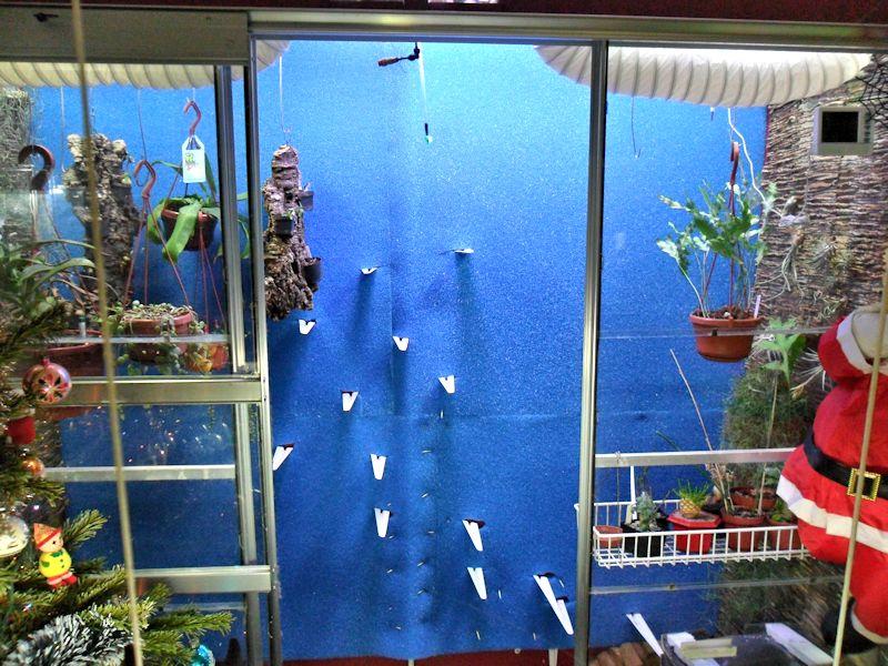 Un mur végétal dans ma serre salon - Page 2 Pose_m11