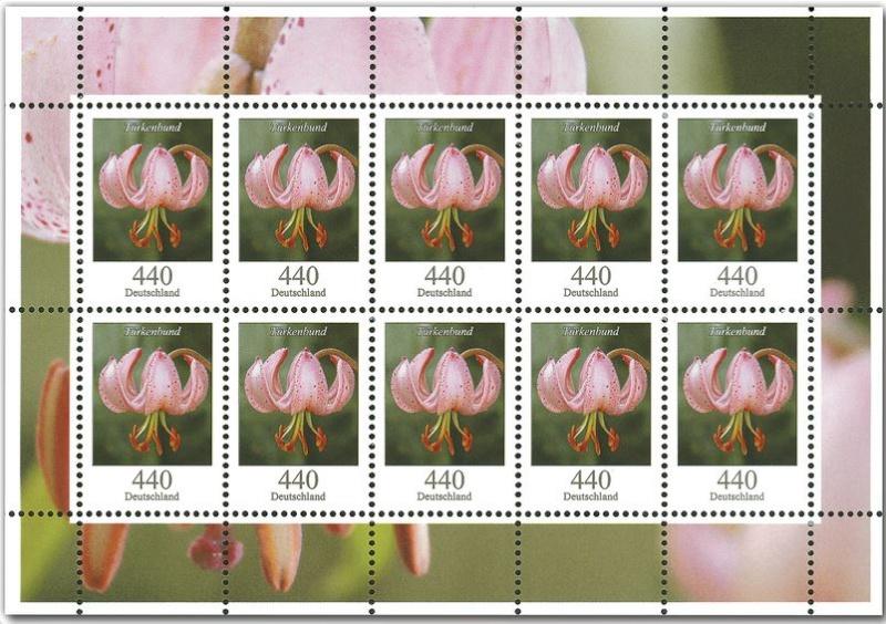 Blumengruß aus Deutschland - Seite 2 2014_b12