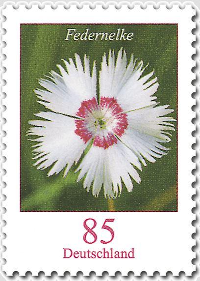 Blumengruß aus Deutschland - Seite 2 2014_f10
