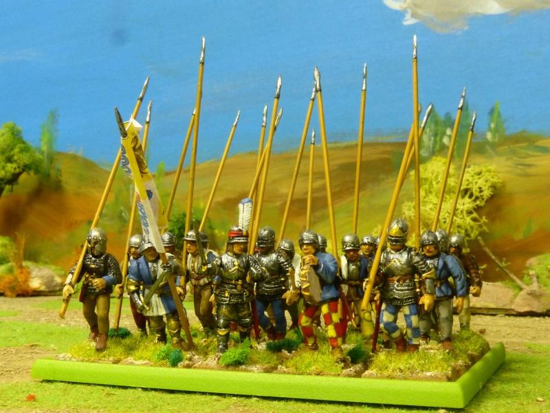 Condottiere et Chiens de Guerre P1050353