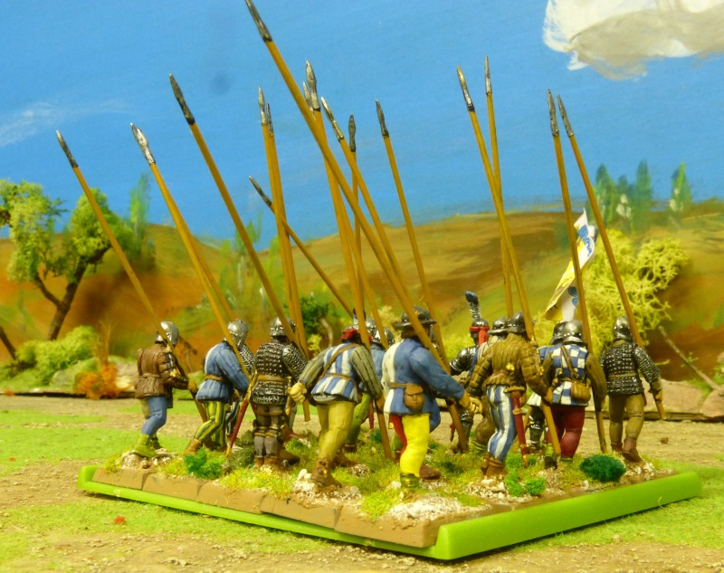 Condottiere et Chiens de Guerre P1050354