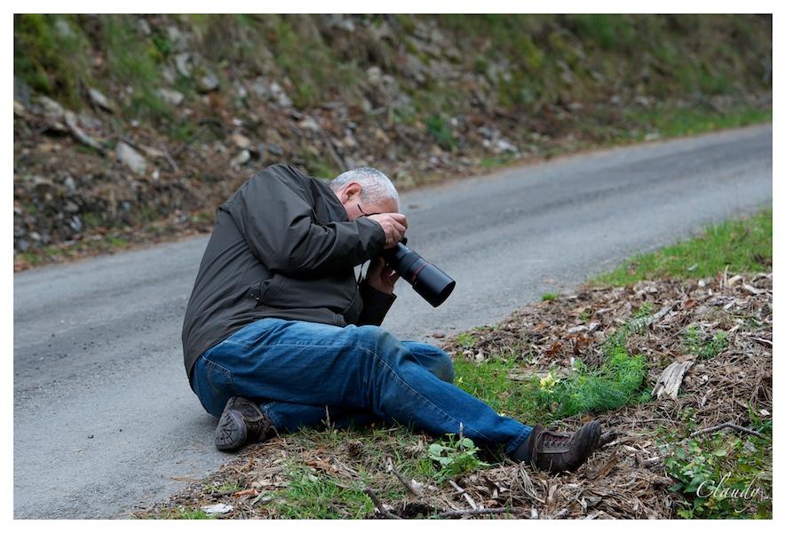 Sortie aux Grotte et Brame du cerf à Han / Lesse : Les photos d'ambiances _dsc0111