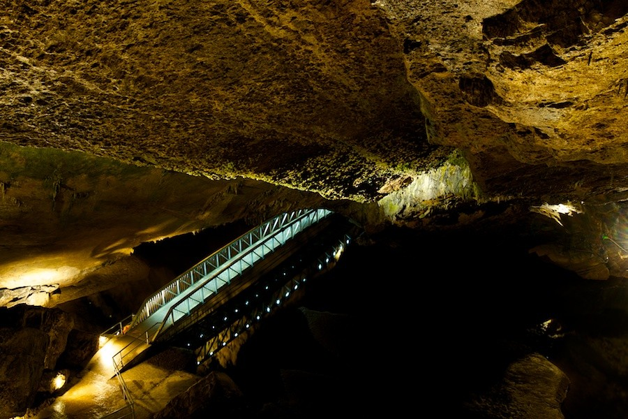 Sortie aux Grotte et Brame du cerf à Han / Lesse : Les photos - Page 3 _dsc0416