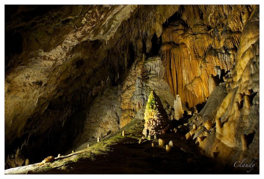 Sortie aux Grotte et Brame du cerf à Han / Lesse : Les photos - Page 3 _dsc0611