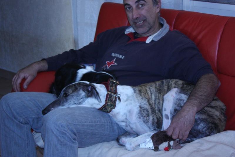 Mon zhom et les chiens Img_6310