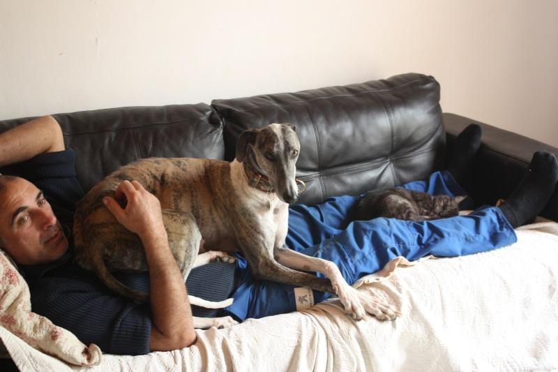 Mon zhom et les chiens Img_6611
