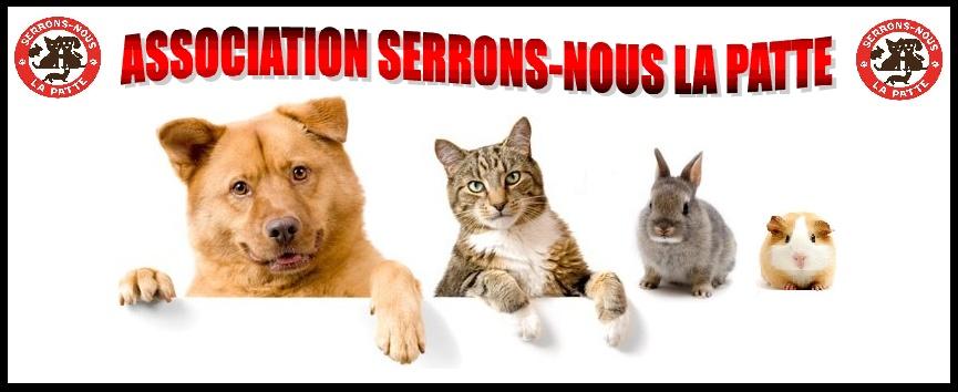 SERRONS-NOUS LA PATTE