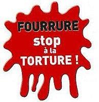 Cyber action contre ETAM qui s'est lancé dans la fourrure... Stop_f10