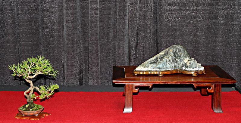 2012 INTERNATIONAL STONE APPRECIATION SYMPOSIUM Valava10